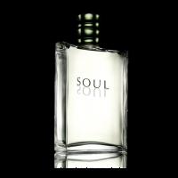 Туалетная вода Soul SOUL код 10231