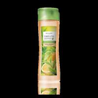 Шампунь-объем для тонких волос «Зеленый чай и бергамот» код 31233